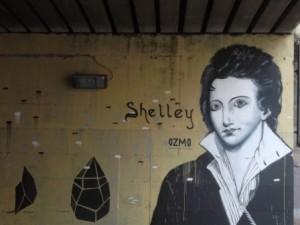 shelley ozmo