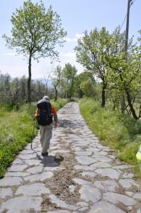 La Via Francigena nel Lazio