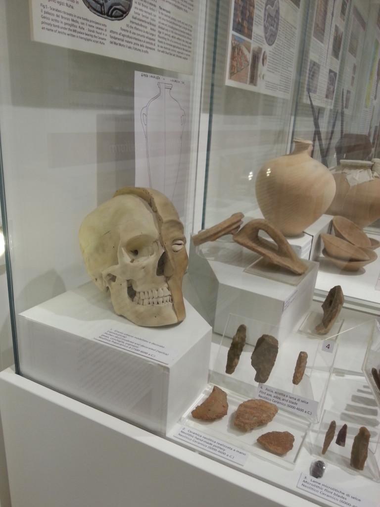 Alla Sapienza un museo per rintracciare le radici comuni