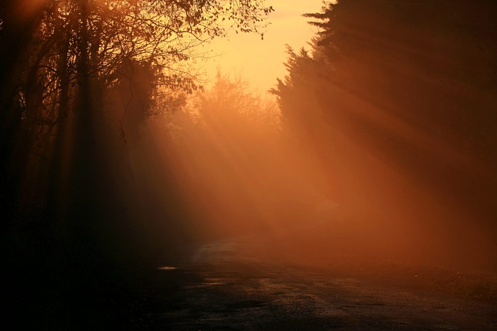 Vai Franchigena al tramonto, festival dei cammini