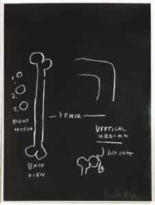 basquiat anatomy