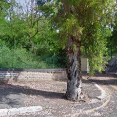 Bilancio Partecipativo di Roma Capitale 2019 – proposta piazzale Socrate