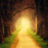Un invito a camminare