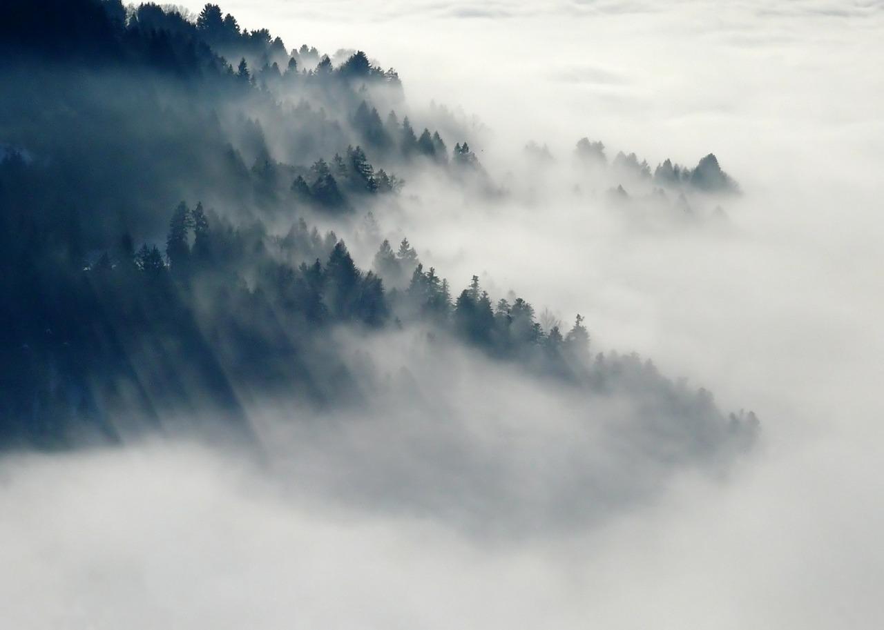 """""""Viandante sul mare di nebbia"""": l'arte del sublime"""