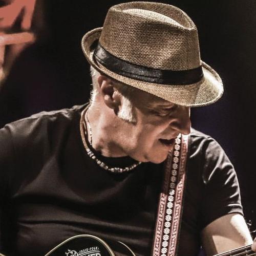 DAVIDE VAN DE SFROOS  PROSEGUE IL RE-TOUR